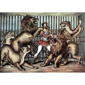 Lion Tamer In Cage With Lions Circus Poster