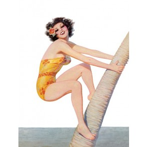 Pin Up Poster Brunette Climbing A Palm Tree
