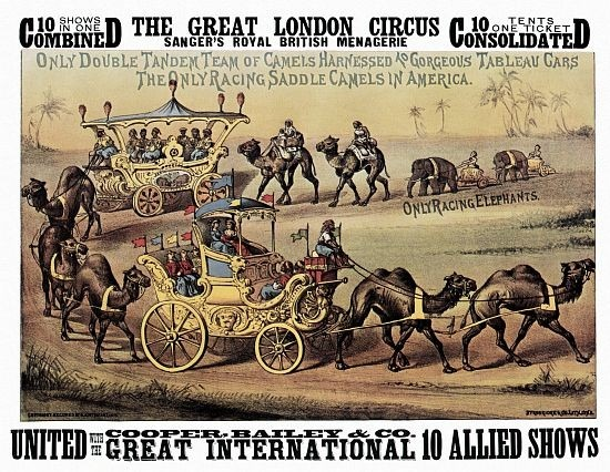 Great London Circus Camels On Parade Circus Poster