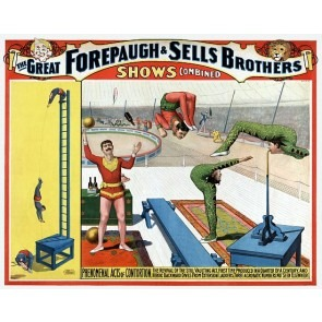 Forepaugh & Sells Acrobats And Contortionists Poster